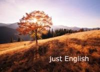 Детские лагеря в Карпатах с изучением английского...only English!