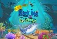 Детский лагерь Black Sea Camp