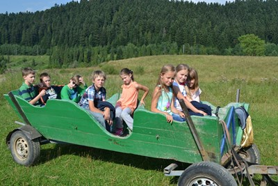 Детский лагерь ICEA Summer Camp (EcoCamp) 2017 Карпаты/с. Явора (Львовская область)
