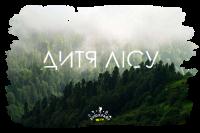Детский лагерь Бушкрафт 2.0. Дитя леса. От Экстрим-центра Карабин