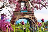 Детский лагерь Парижские тайны весна 2016 Франция/Париж