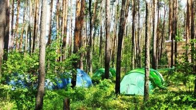 Детский лагерь Vvedenie camp Киевская область/с. Гавронщина